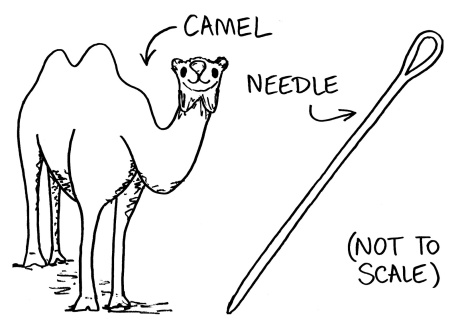 Camel-and-needle3